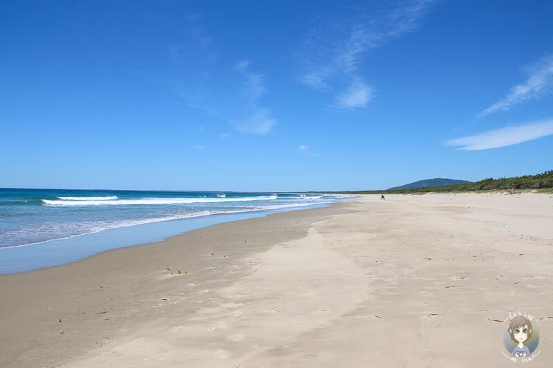 Am Meer im Seven Mile Beach Nationalpark, New South Wales, Australien