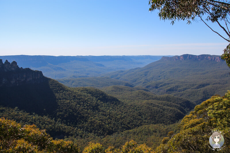 Aussicht Eagle Hawk Lookout Australien