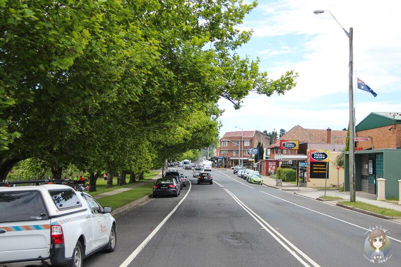Hauptstrasse in Blackheath mit Baeumen und Autos an der linken Strassenseite