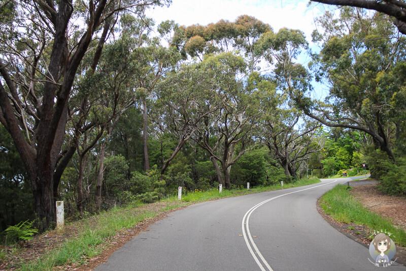 Greater Blue Mountains Drive Australien