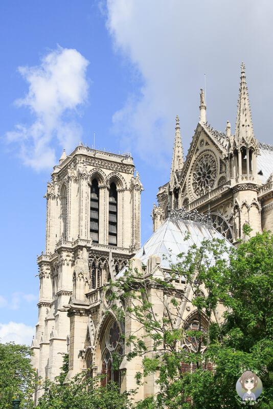 Kathedrale Paris Ansicht