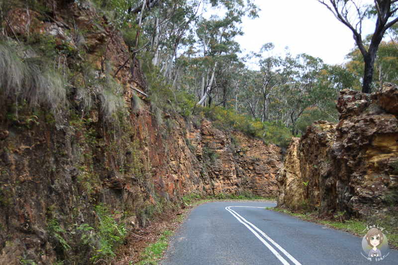 Megalong Road