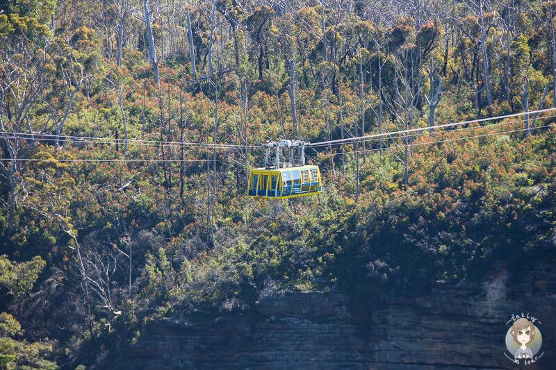 Seilbahn Scenic Skyway Blue Mountains National Park