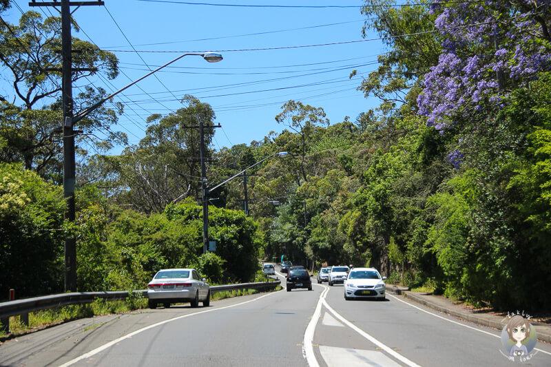 Schoene Strasse im Vorort von Sydney