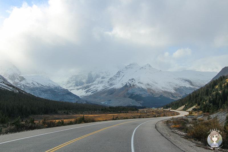 Auf dem Weg Richtung Columbia Icefield Centre