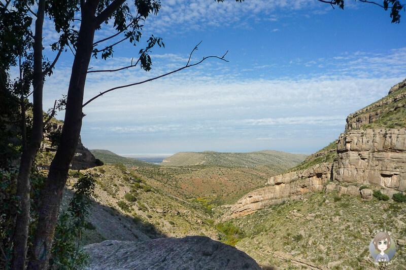 Blick über die Landschaft am Lincoln National Forest