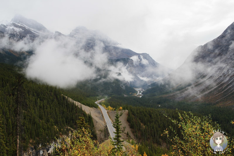 Ausblick The Big Bend Icefields Parkway