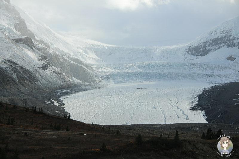 Blick auf den Athabasca Gletscher am Icefields Centre von Kanada