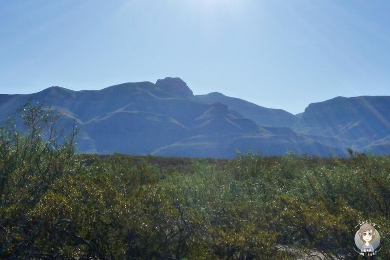 Die Wueste in Alamogordo