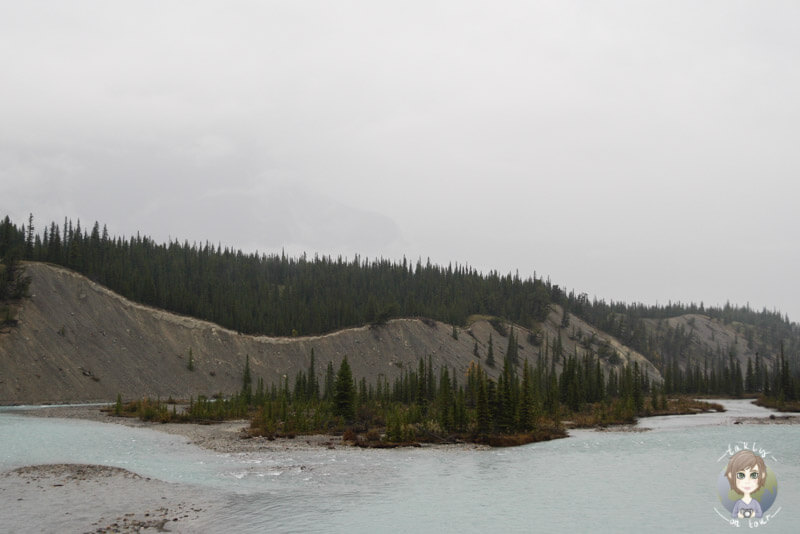Viewpoint-auf-dem-Icefields-Parkway-Kanada
