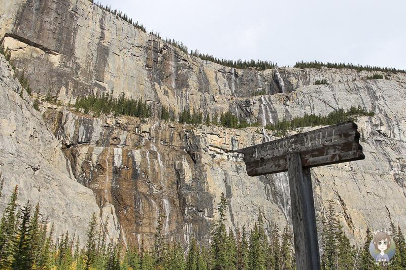 Weeping Wall, Icefields Parkway Alberta