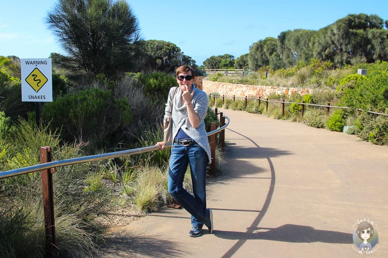 Angst auf Reisen - Angst vor Schlangen in Australien