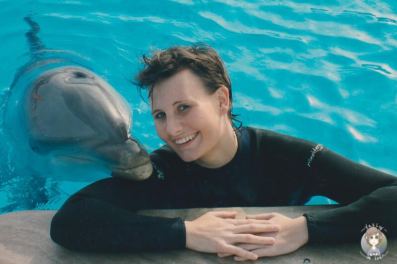 Delphin AIDA