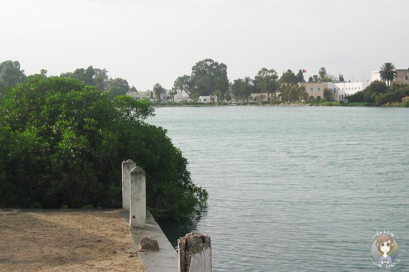 Blick auf ein Gewaesser in Tunis auf unserer Stadtrundfahrt der Reise Aida in Tunis