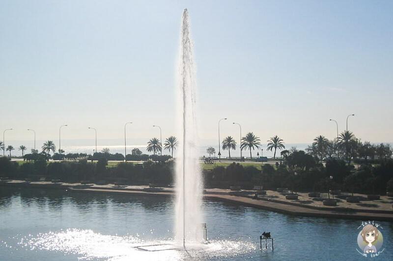 Fontaene Parc Mar Palma