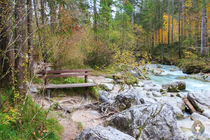 Bänke im Zauberwald am Hintersee