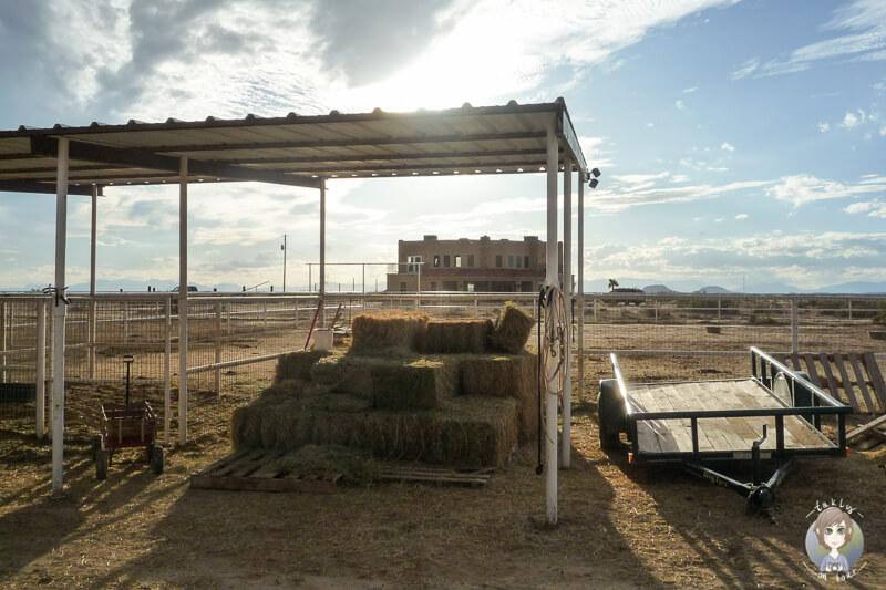 Zu Besuch auf einer Ranch in New Mexico