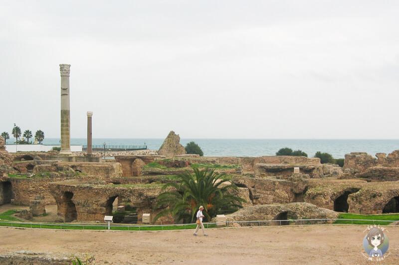 Blick auf die Ruinen der Antonius Pius Thermen auf der Fuehrung durch Karthago