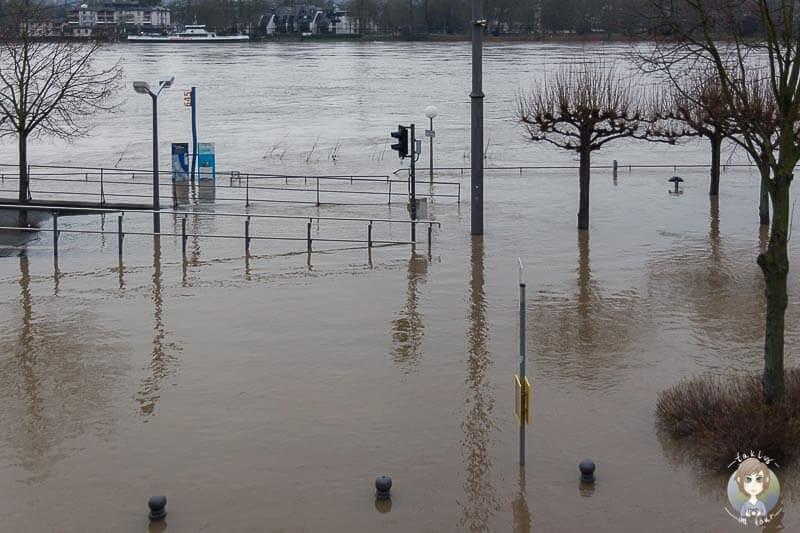 Hochwasser in Königswinter