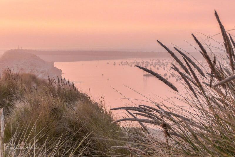Blick auf den Umpqua Beach ist einer der Westkueste USA Tipps von Bloggern <i>Foto: ©Silke Weidemann & Markus Ramm</i>
