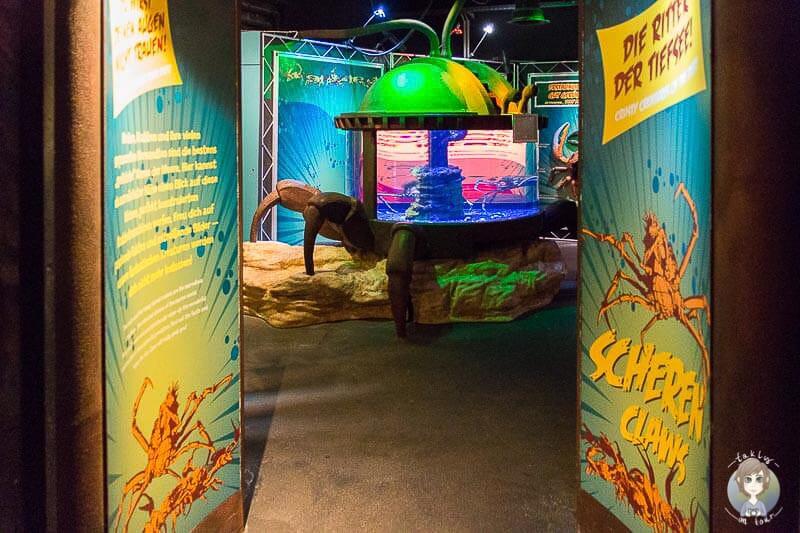 Kinderfreundliches Design im Sea Life Koenigswinter