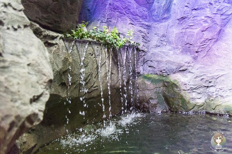 Ein kleiner Wasserfall im SeaLife