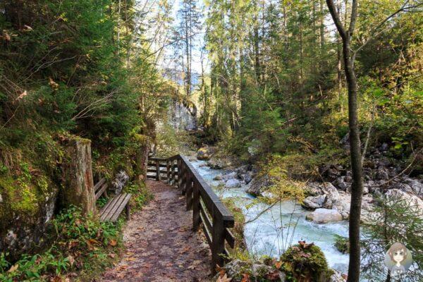 Der Zauberwald bei Ramsau, im Berchtesgadener Nationalpark Deutschland - taklyontour.de