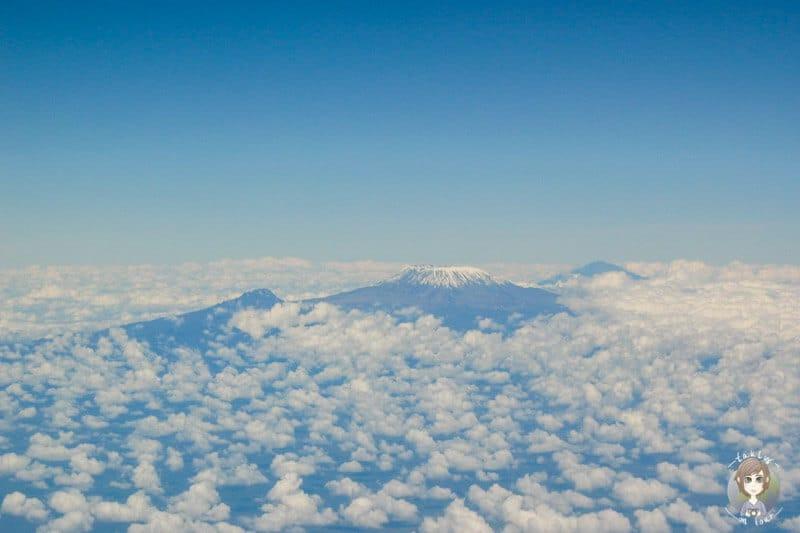 Blick aus dem Fenster im Flugzeug