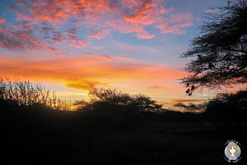 Sonnenaufgang im Tsavo West Nationalpark