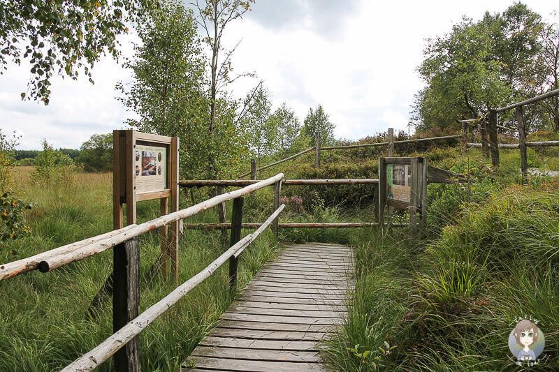 Naturpark Eifel Hohes Venn Schilder