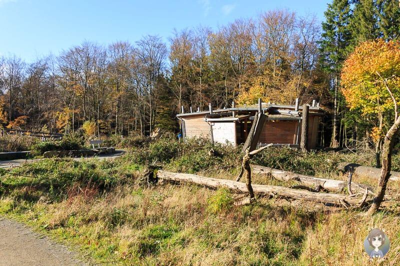Eine Schutzhütte mit Toiletten und Informationen auf dem Erlebnispfad Wilder Weg in der Eifel