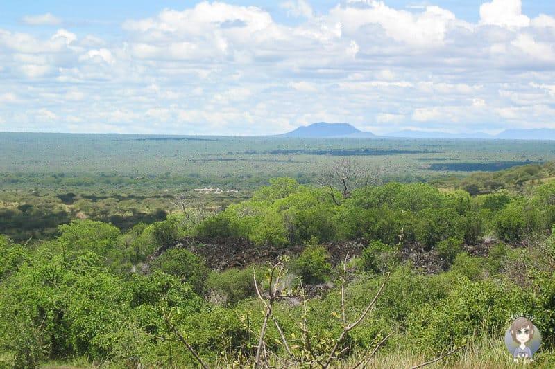 Unser Safari Camp im Tsavo Nationalpark in Kenia