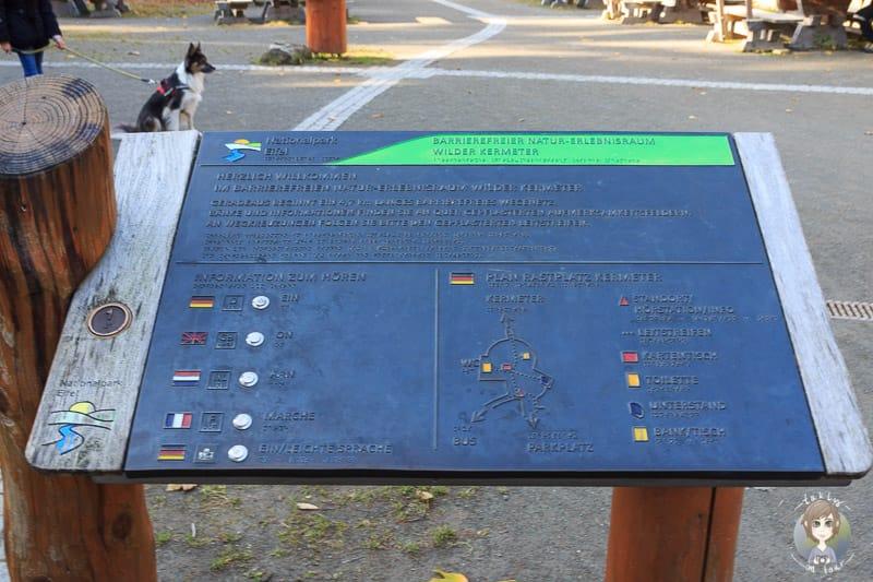 Eine Übersichtstafel von den Wanderwegen am Wilden Kermeter in der Eifel