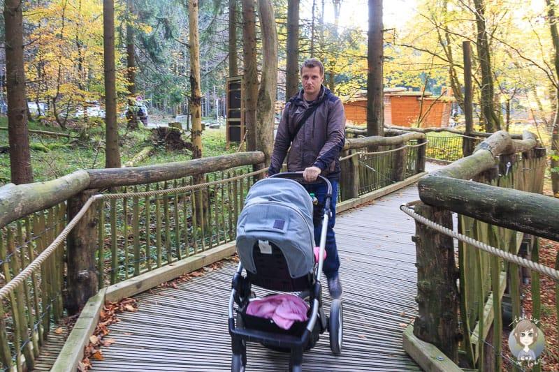Mit dem Kinderwagen in der Eifel wandern