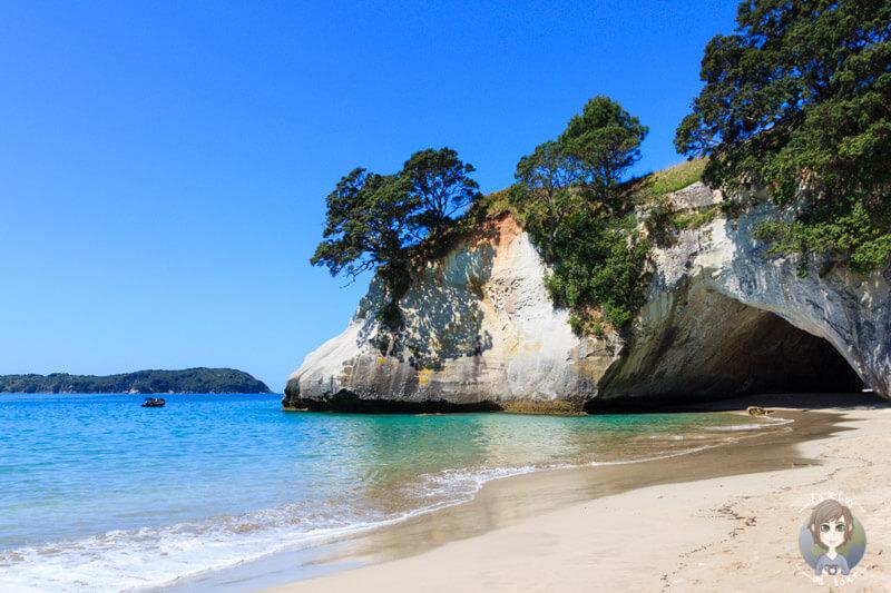 Blick auf die Cathedral Cove Tipps und Impressionen fuer Neuseeland Reisen