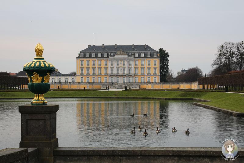 Blick auf das Schloss Bruehl