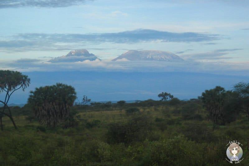 Aussicht auf den Kilimandscharo beim Frühstück auf unserer Kenia Safari