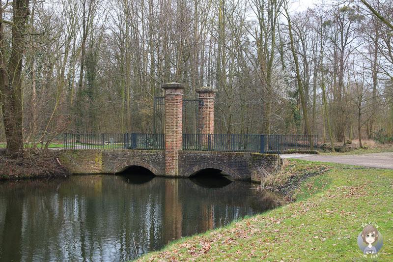Ein Weiher am Schloss Brühl