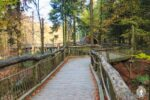 Blick auf den Holzsteg vom Wilden Weg am Wilden Kermeter im Nationalpark Eifel