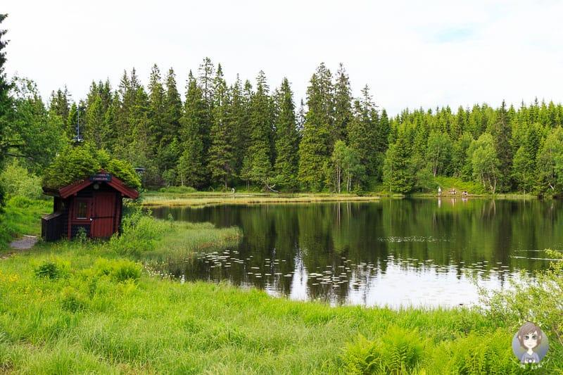 Der See Øvresetertjern in Oslo
