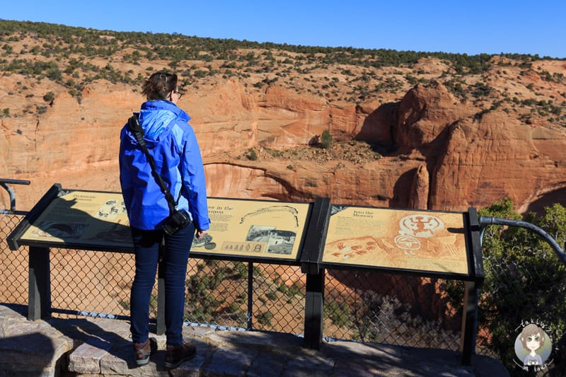 Aussicht auf den Betatakin Canyon
