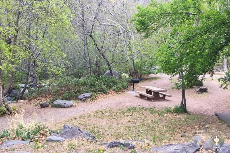 Schöne Picknickplätze auf der Banjo Bill Rest Area
