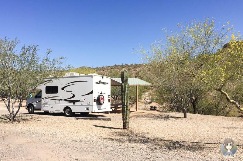 Unser Wohnmobil neben einem Kaktus auf dem Campingplatz am Lake Pleasant in Arizona