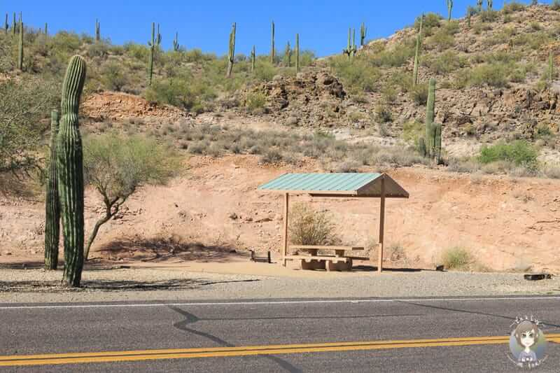 Campingplatz am Lake Pleasant