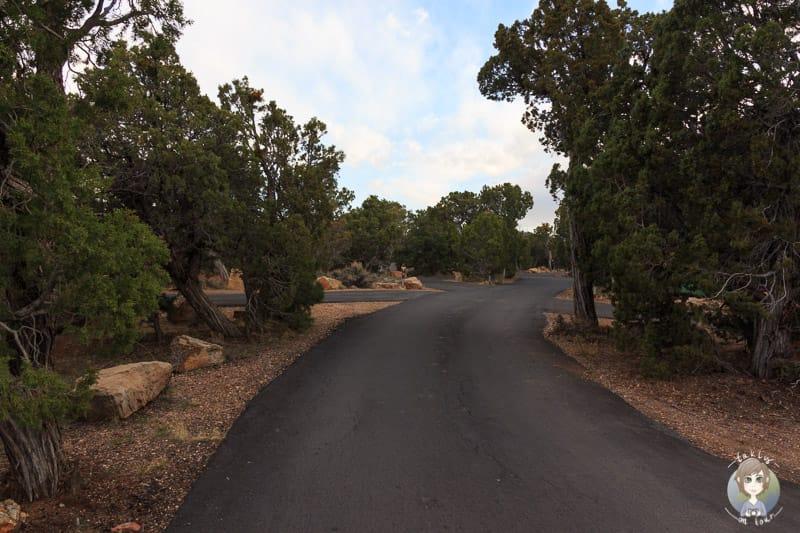 Die Straße auf dem Desert View Campingplatz