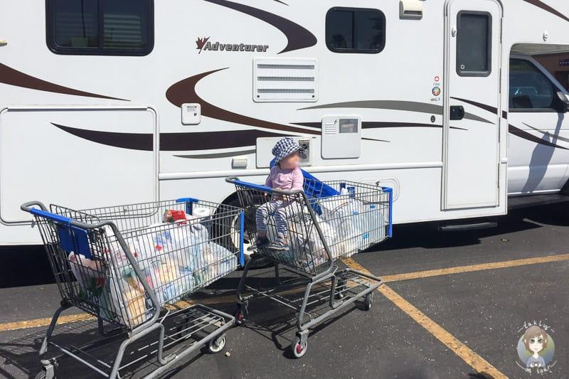 Die Einkaufswagen nach dem Ersteinkauf