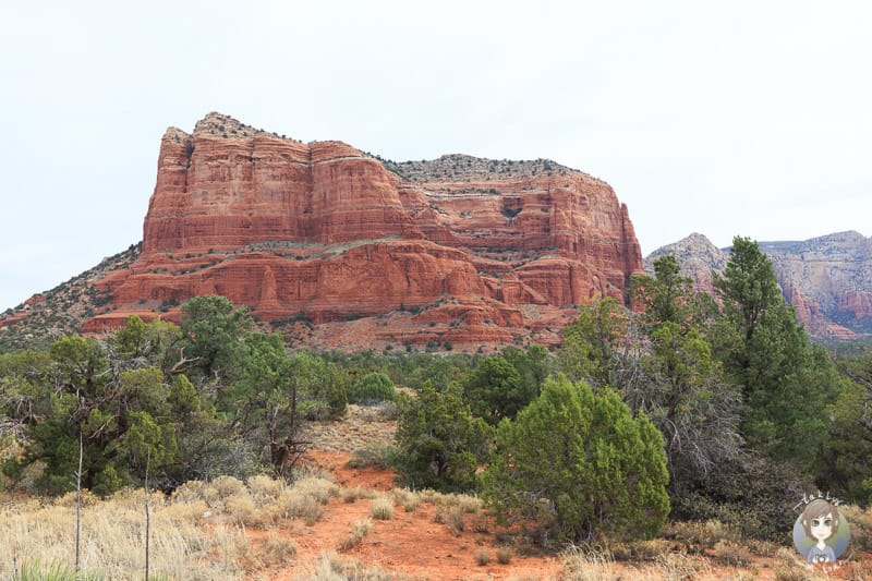 Felsformation am Bell Rock Vistapoint nahe Sedona