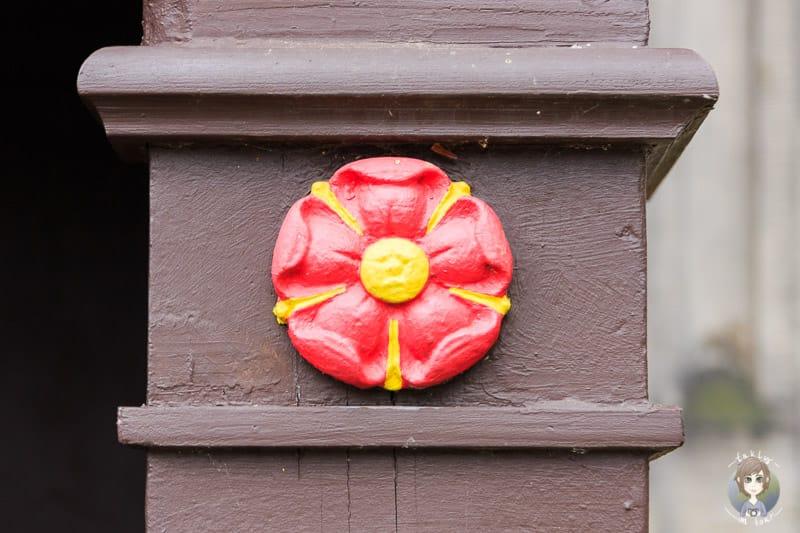 Die Lippische Rose am Schloss Detmold