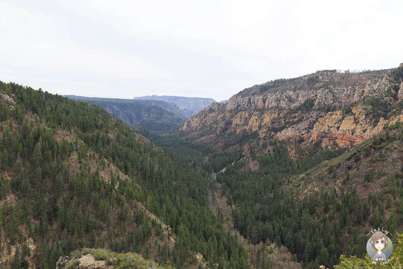 Aussicht in den Oak Creek Canyon