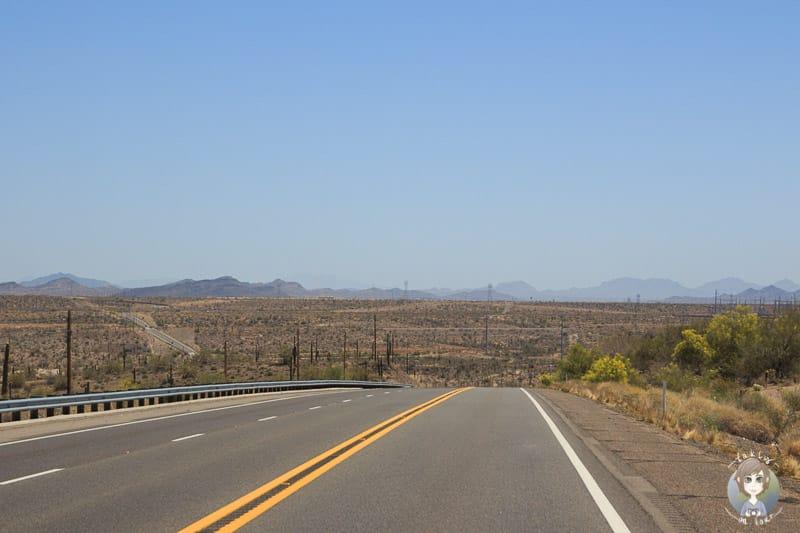 Auf der Rückfahrt vom Lake Pleasant durch die Wüste